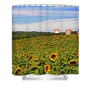 Sunflower Field New Jersey Shower Curtain