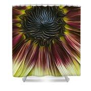 Sunflower In Oils Shower Curtain