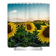 Sister Sunflowers Shower Curtain
