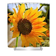 Sunflower With Texture Shower Curtain