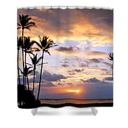 Sunrise Between Palms Shower Curtain
