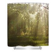 Sunshine Morning Shower Curtain