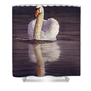 Swan Shower Curtain by David Stribbling