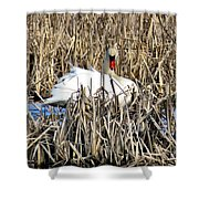 Swanly Shower Curtain