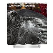 Sweet Home Alabama Shower Curtain by Kathy Clark
