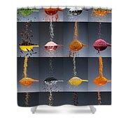 1 Tablespoon Flavor Collage Shower Curtain by Steve Gadomski