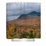Tapestry Of Fall Colors Shower Curtain