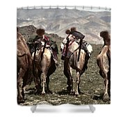 Working Camels Shower Curtain