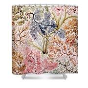 Textile Design Shower Curtain