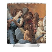 The Assumption Of The Virgin Mary Shower Curtain