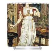 The Crown Of Glory Shower Curtain