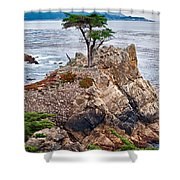 The Famous Lone Cypress Tree At Pebble Beach In Monterey California Shower Curtain