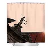 The Feature Shower Curtain