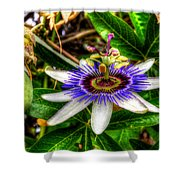 The Flower 14 Shower Curtain