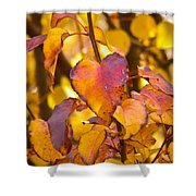 The Heart Of Fall Shower Curtain