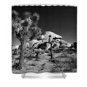 The Joshua Tree Shower Curtain