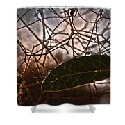 The Last Leaf Shower Curtain