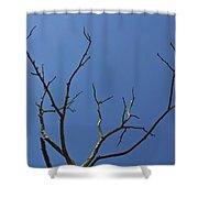 The Lightning Tree Shower Curtain