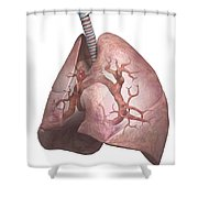 The Lungs Shower Curtain
