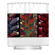 The Many Faces Of Heliconia  Shower Curtain