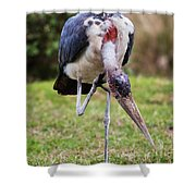 The Marabou Stork In Tanzania. Africa Shower Curtain