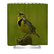 The Meadowlark Sings Shower Curtain