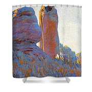 The Medicine Robe Shower Curtain