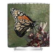 The Monarch Painterly Shower Curtain