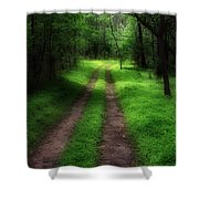 The Narrow Path Shower Curtain