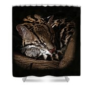 The Ocelot Shower Curtain