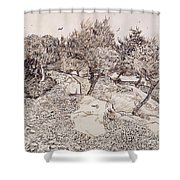 The Olive Trees Shower Curtain