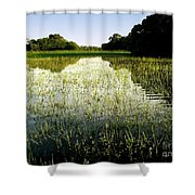 The Pantanal Shower Curtain