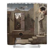 The Pool Of Bethesda Shower Curtain