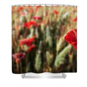 The Poppy Shower Curtain