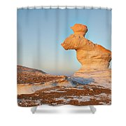 The Rabbit Stone Formation In White Desert Shower Curtain