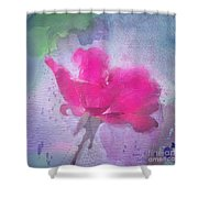 The Scent Of Roses Shower Curtain