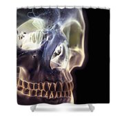 The Skull And Paranasal Sinuses Shower Curtain