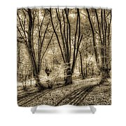 The Spring Forest Shower Curtain