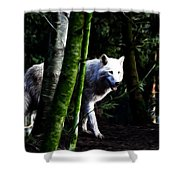 The White Wolf Shower Curtain