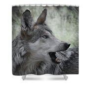 The Wolf 4 Shower Curtain