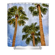 Three Palms Palm Springs Shower Curtain