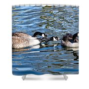 Three's A Crowd Shower Curtain