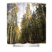 A Path Through The Woods  Shower Curtain