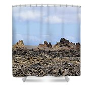 Timanfaya National Park Shower Curtain