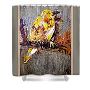 Tired Bird Shower Curtain