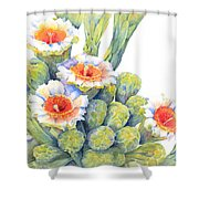 Top Bloomers Shower Curtain