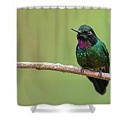Tourmaline Sunangel Shower Curtain