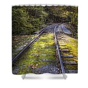Tracks Along The River Shower Curtain