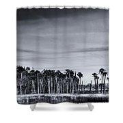 Tranquil Hammock Shower Curtain