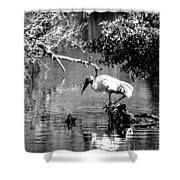 Tranquility Bw Shower Curtain